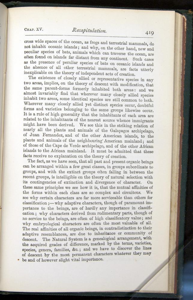 Image of Darwin-F401-1876-419