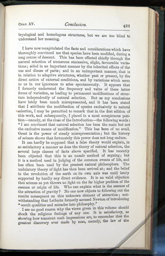 Image of Darwin-F401-1876-421