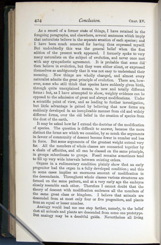 Image of Darwin-F401-1876-424