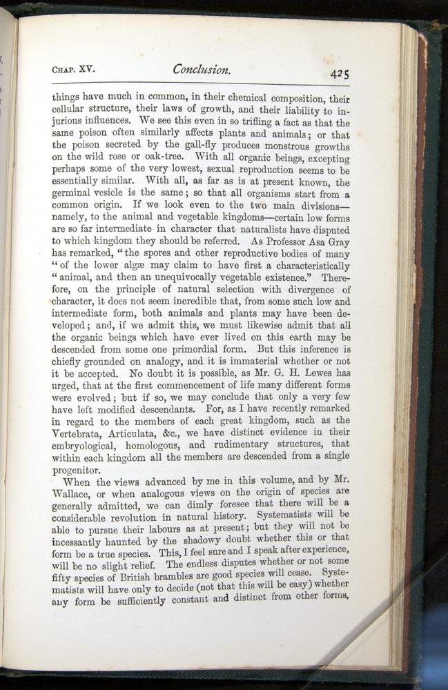 Image of Darwin-F401-1876-425