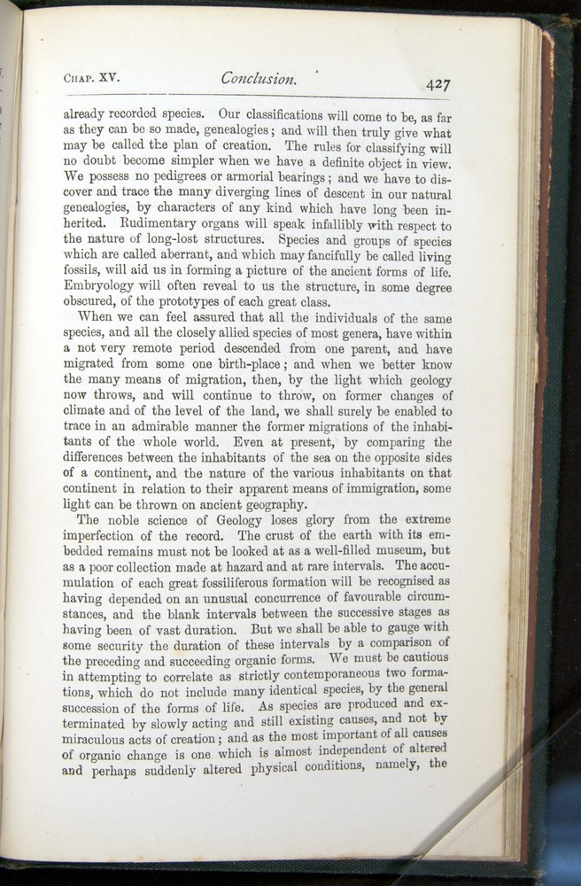 Image of Darwin-F401-1876-427