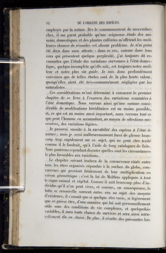 Image of Darwin-F656-1866-00012