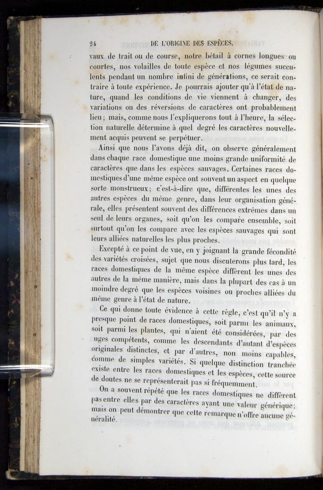 Image of Darwin-F656-1866-00024