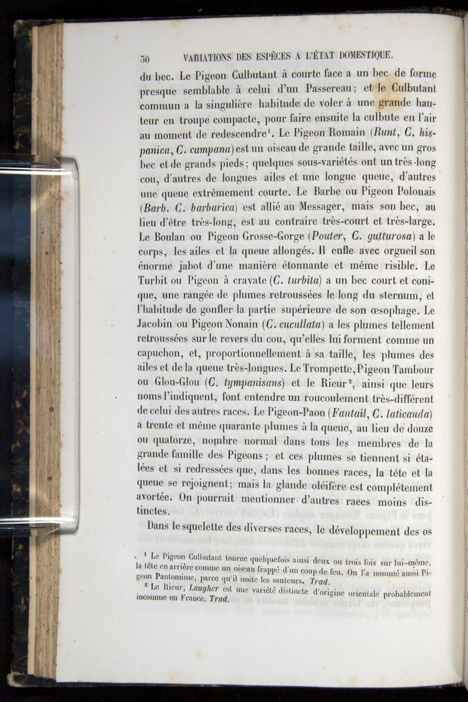 Image of Darwin-F656-1866-00030
