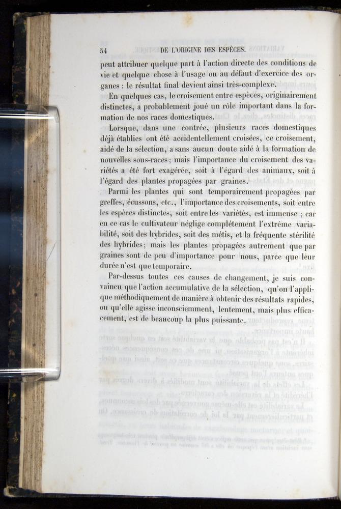 Image of Darwin-F656-1866-00054