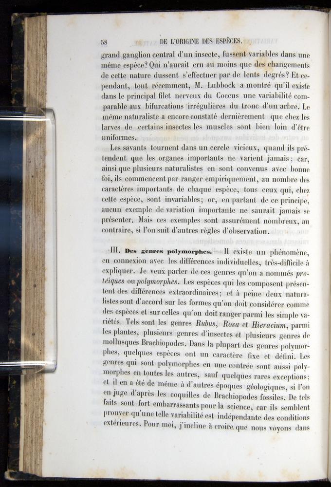 Image of Darwin-F656-1866-00058