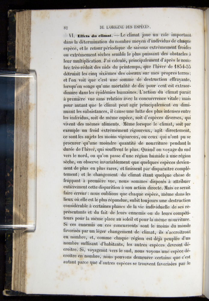 Image of Darwin-F656-1866-00082