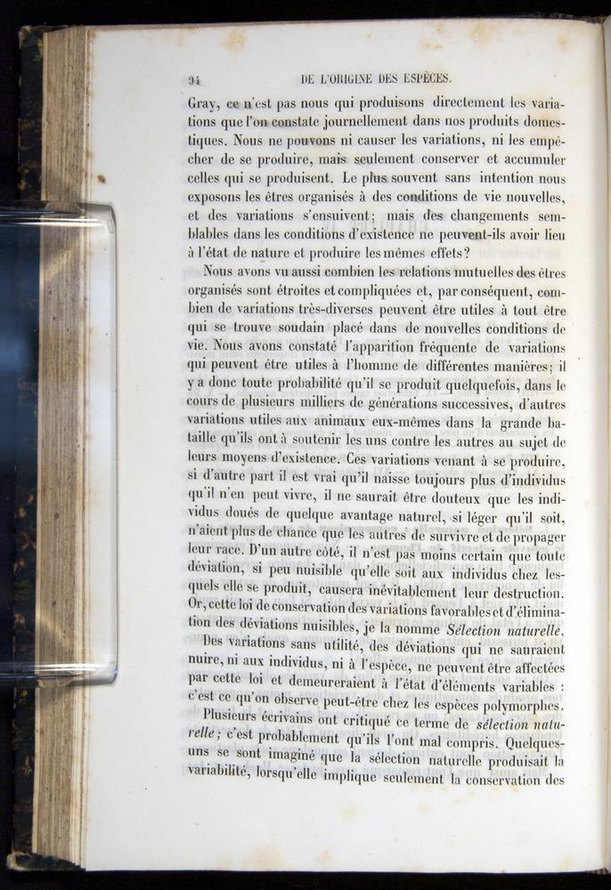 Image of Darwin-F656-1866-00094