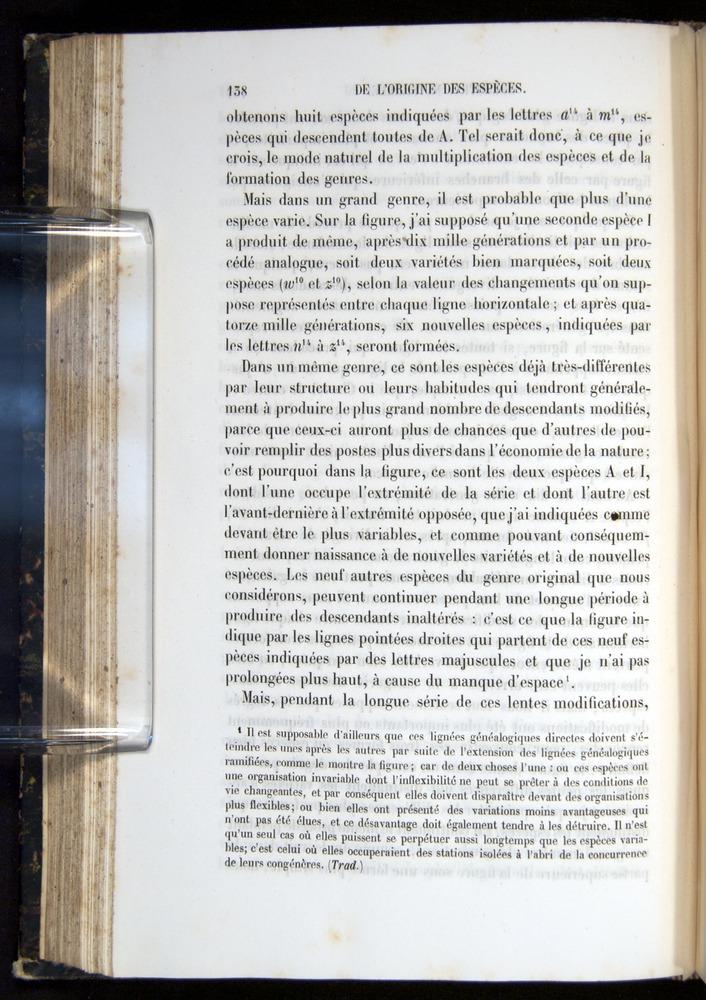 Image of Darwin-F656-1866-00138