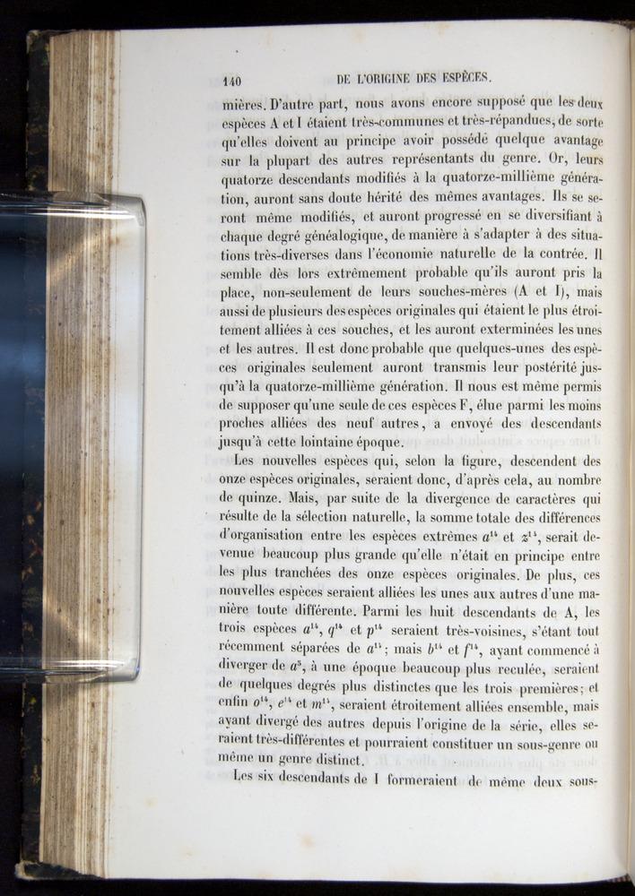Image of Darwin-F656-1866-00140