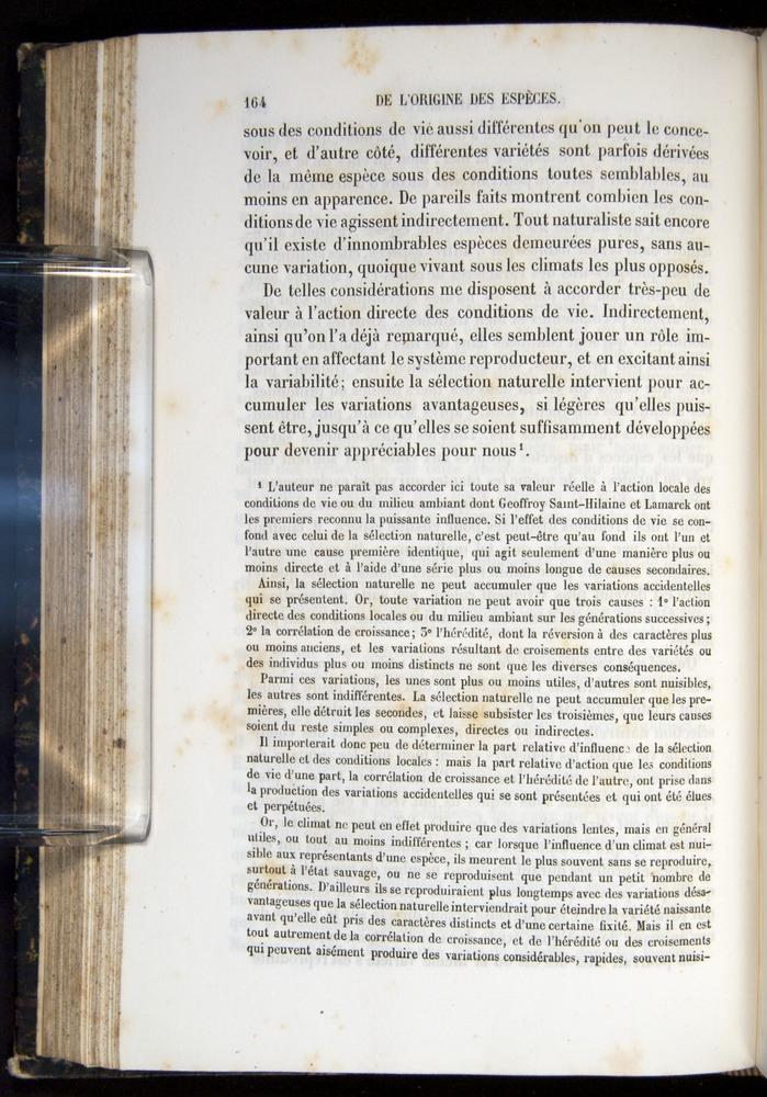 Image of Darwin-F656-1866-00164