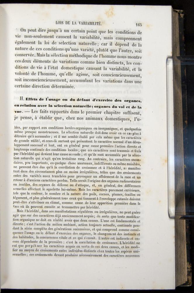 Image of Darwin-F656-1866-00165