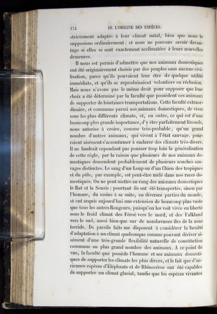Image of Darwin-F656-1866-00174