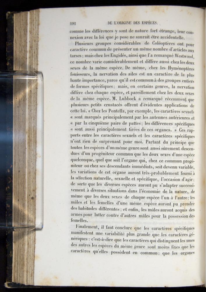 Image of Darwin-F656-1866-00192