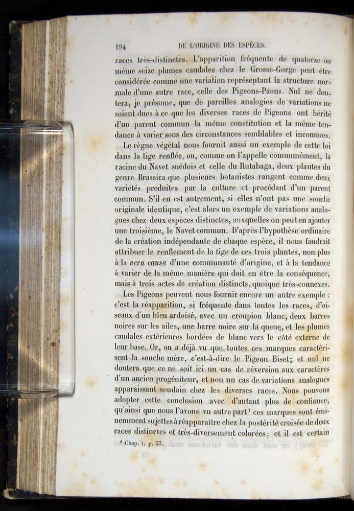 Image of Darwin-F656-1866-00194