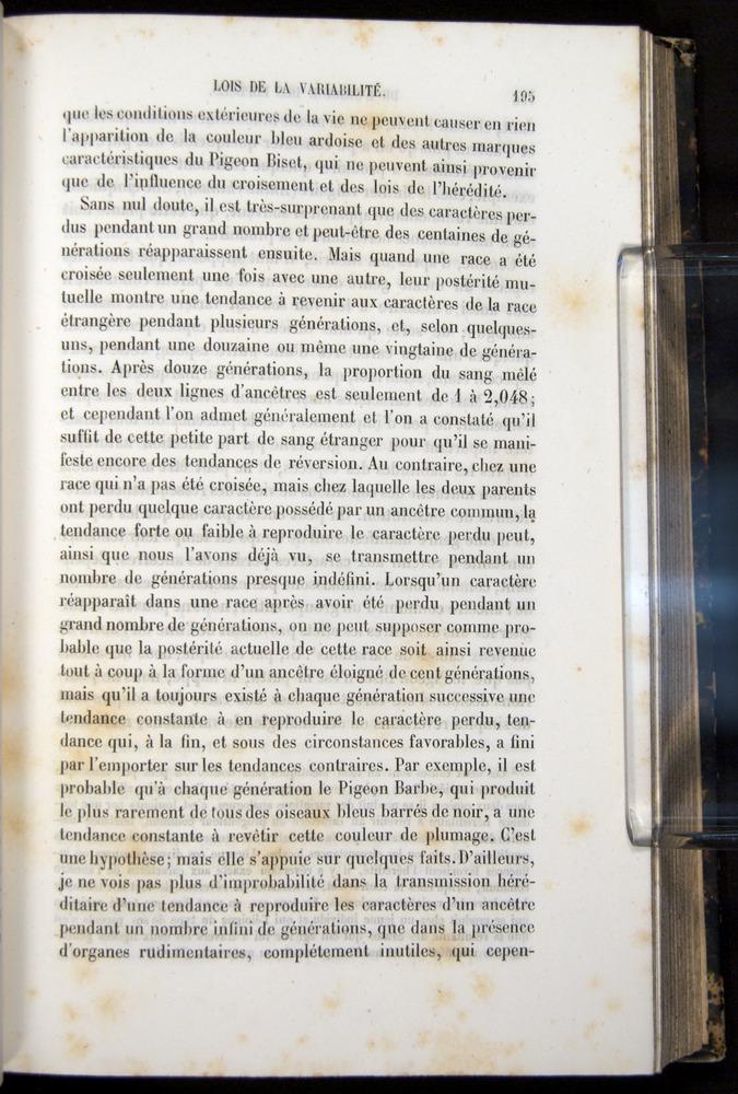 Image of Darwin-F656-1866-00195