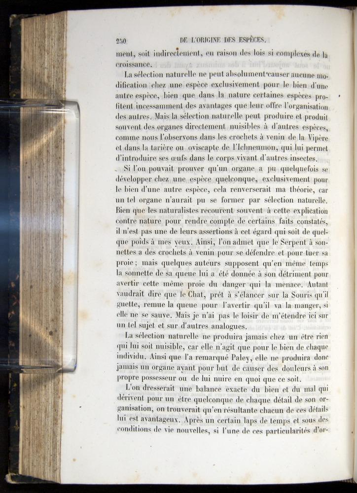 Image of Darwin-F656-1866-00250