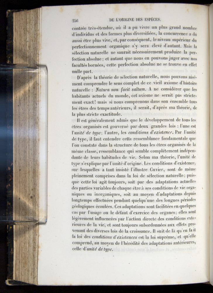 Image of Darwin-F656-1866-00256