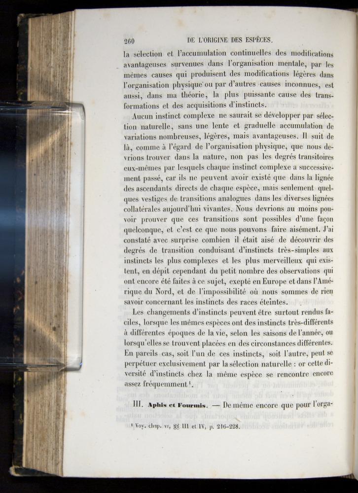 Image of Darwin-F656-1866-00260