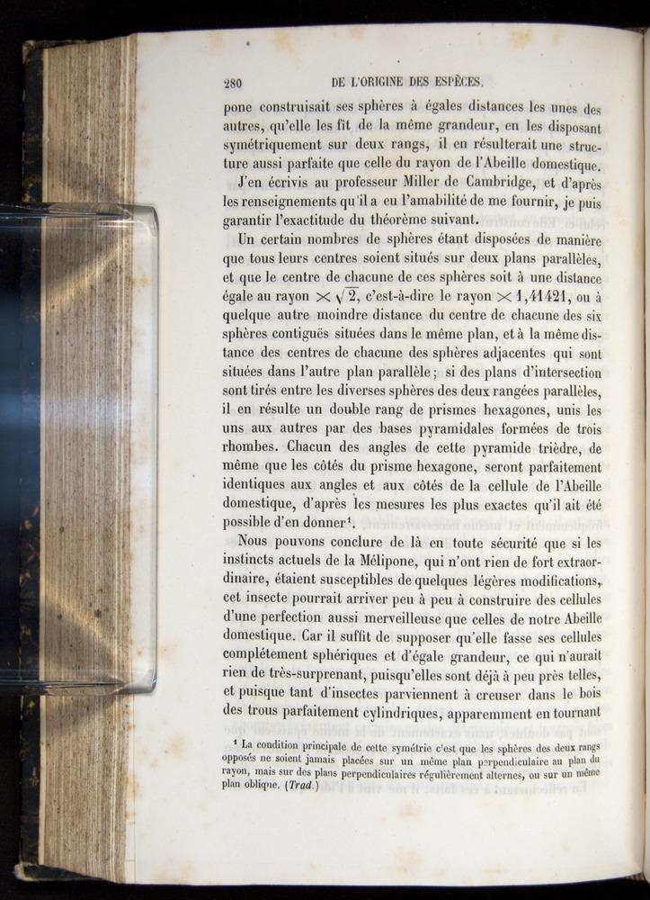 Image of Darwin-F656-1866-00280