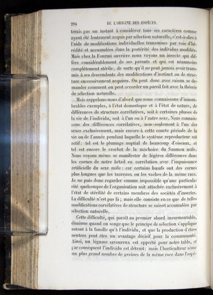 Image of Darwin-F656-1866-00294