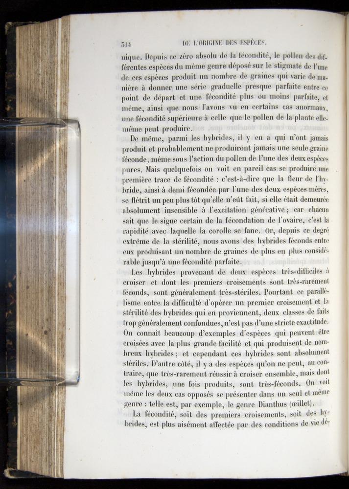 Image of Darwin-F656-1866-00314