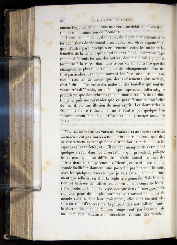 Image of Darwin-F656-1866-00326