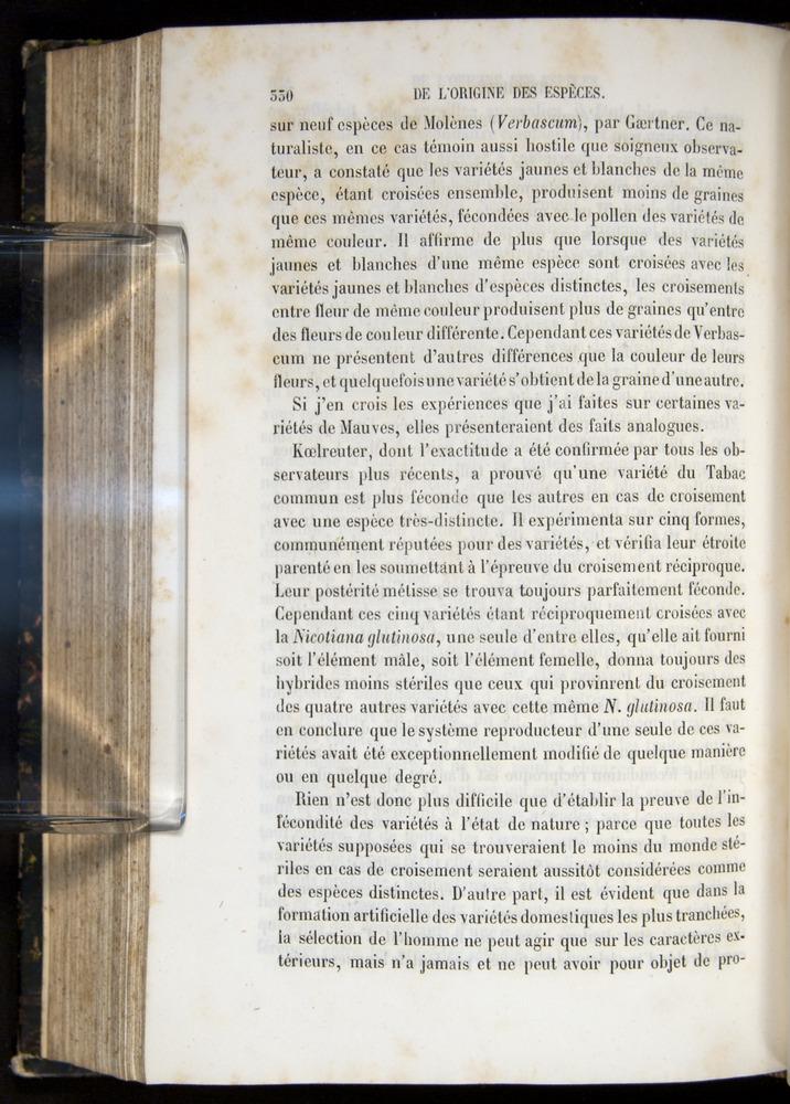 Image of Darwin-F656-1866-00330