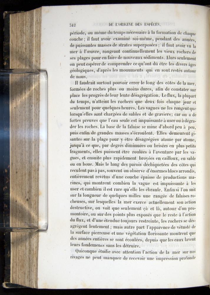 Image of Darwin-F656-1866-00342