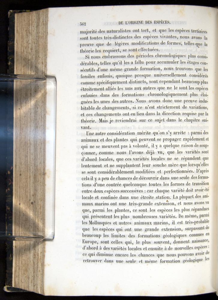 Image of Darwin-F656-1866-00362