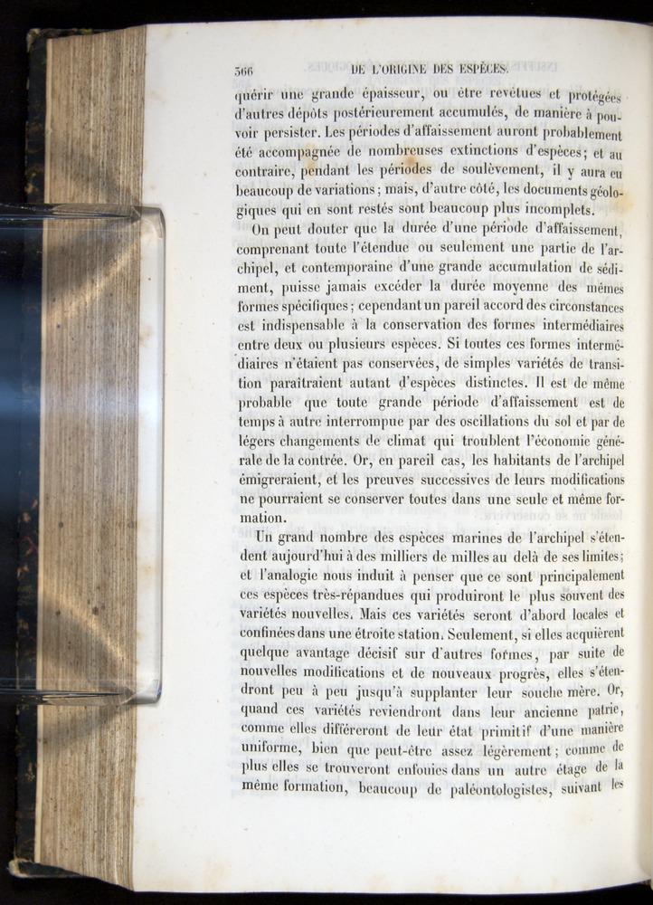 Image of Darwin-F656-1866-00366