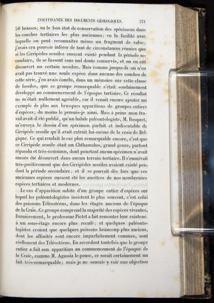 Image of Darwin-F656-1866-00371