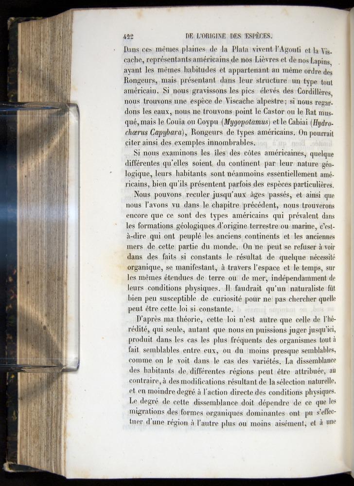 Image of Darwin-F656-1866-00422