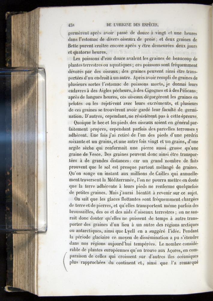 Image of Darwin-F656-1866-00438