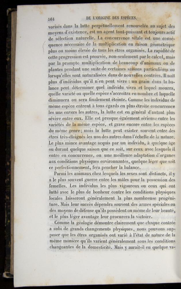 Image of Darwin-F656-1866-00564