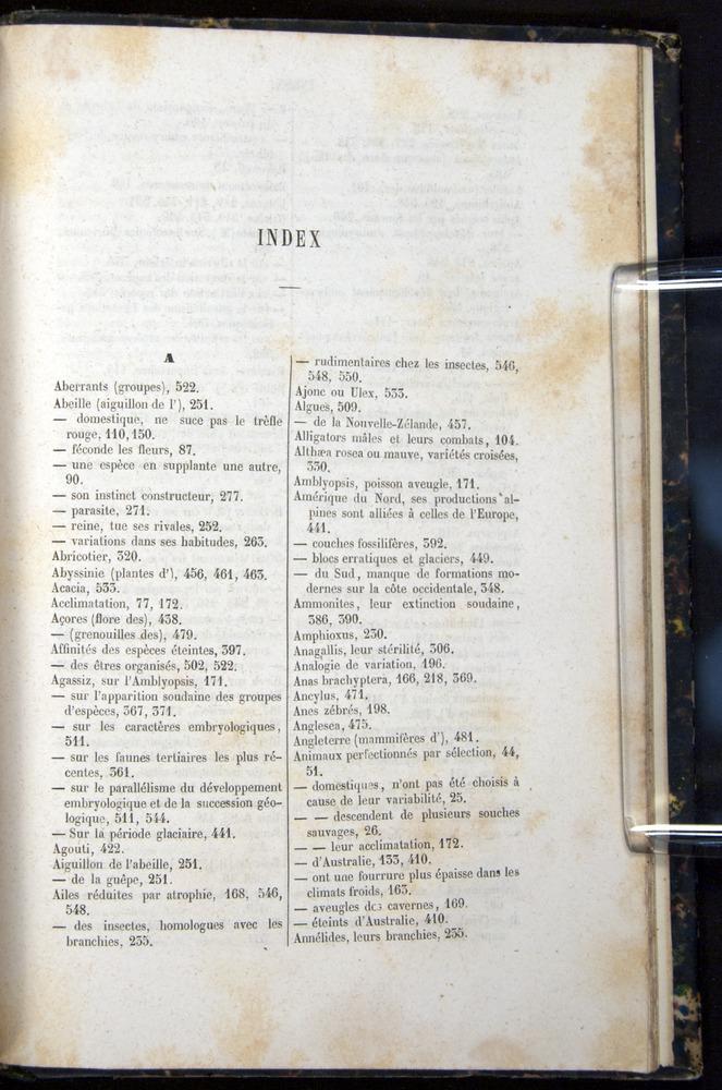 Image of Darwin-F656-1866-00599