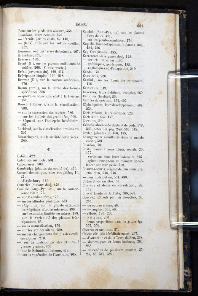 Image of Darwin-F656-1866-00601
