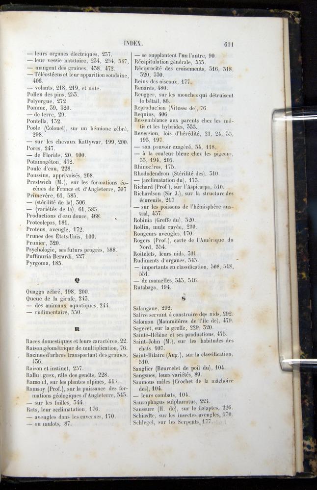 Image of Darwin-F656-1866-00611