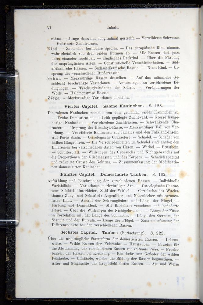 Image of Darwin-F914.1-1868-00000-z02