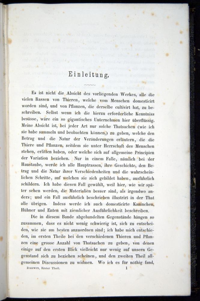 Image of Darwin-F914.1-1868-00001