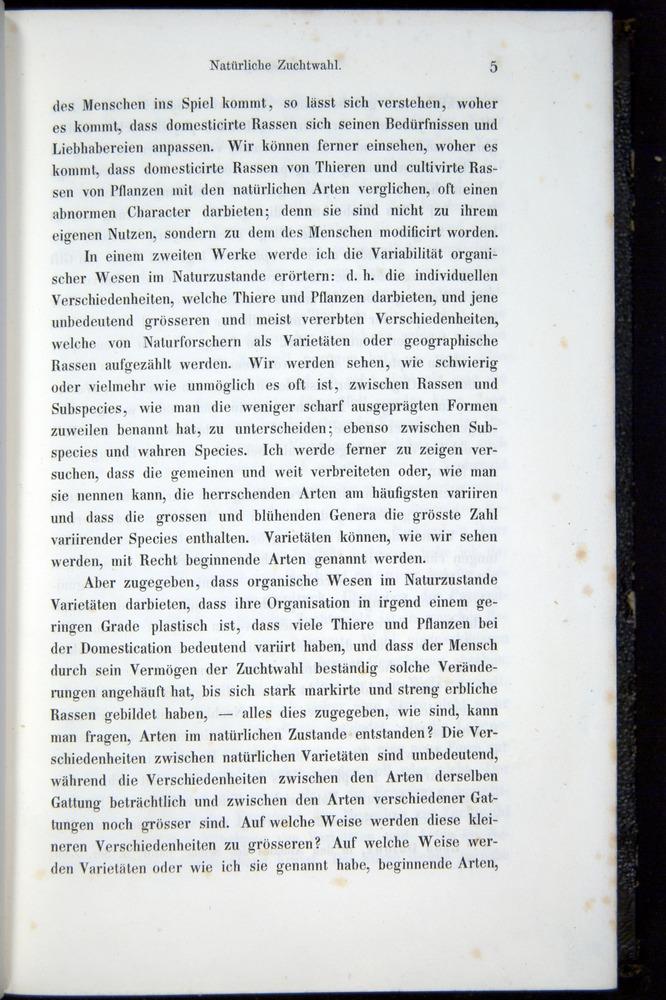 Image of Darwin-F914.1-1868-00005