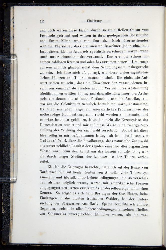 Image of Darwin-F914.1-1868-00012