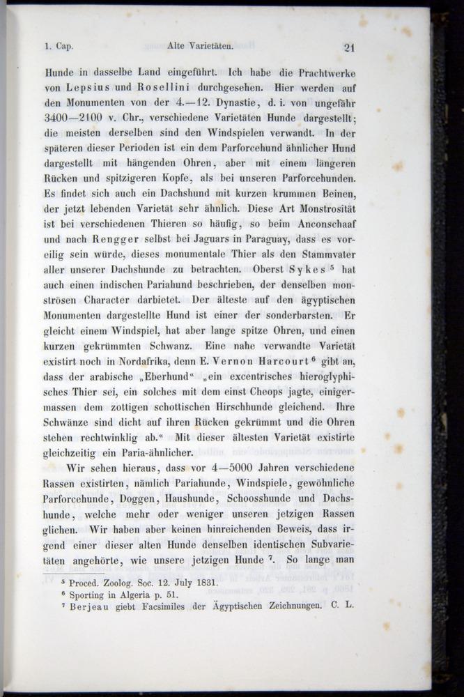 Image of Darwin-F914.1-1868-00021