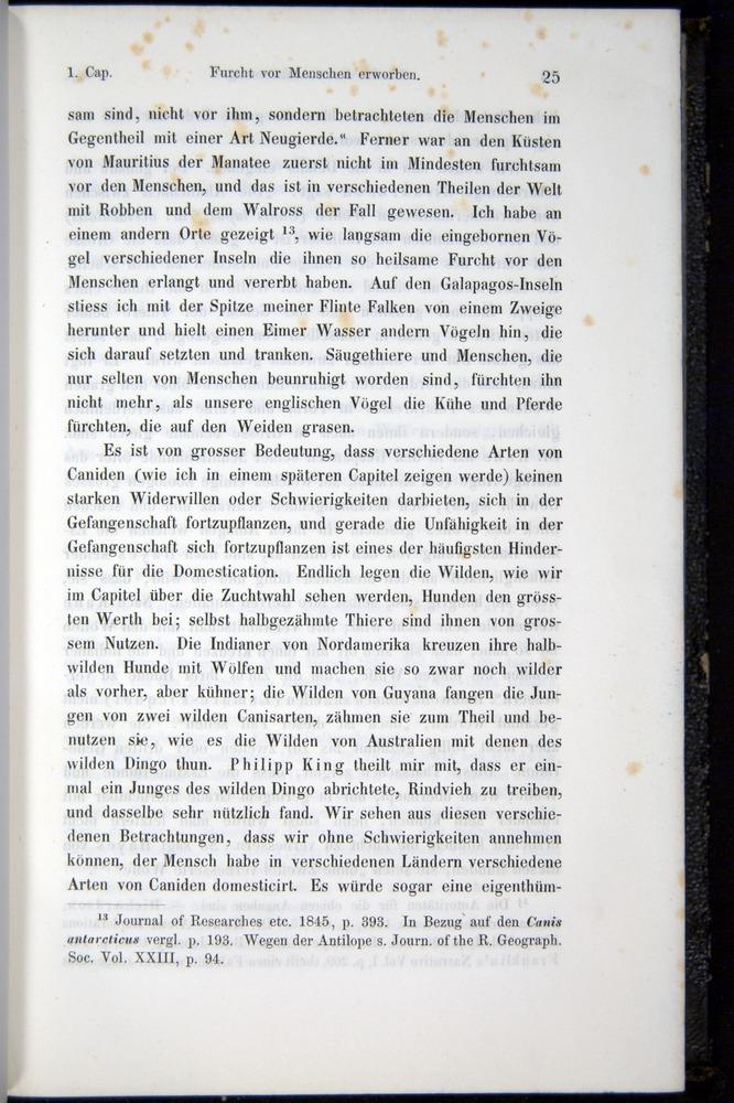 Image of Darwin-F914.1-1868-00025
