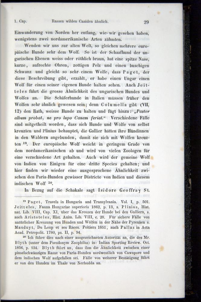 Image of Darwin-F914.1-1868-00029