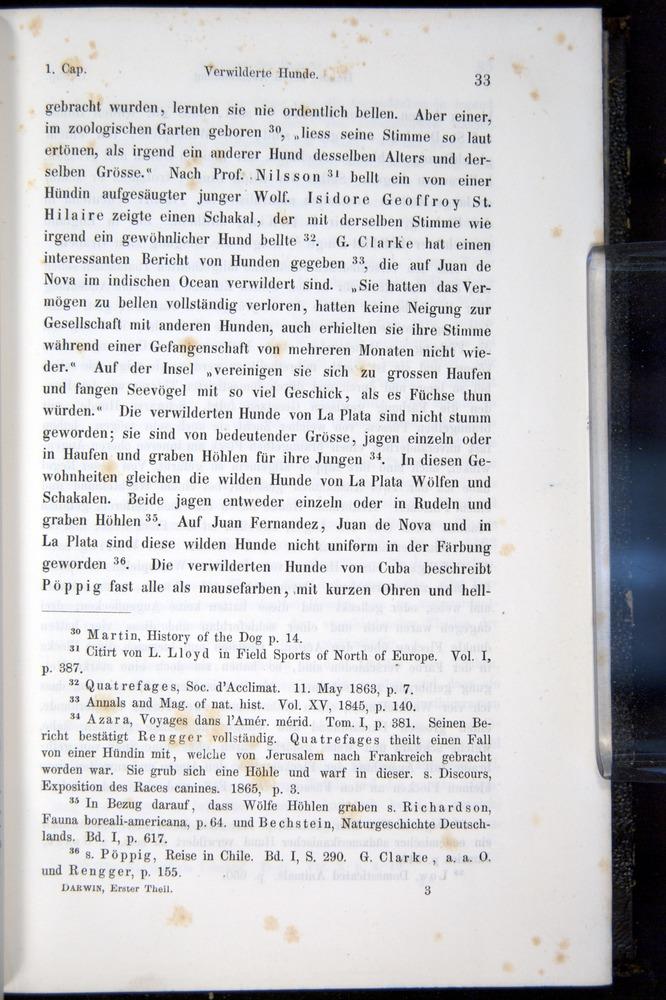 Image of Darwin-F914.1-1868-00033
