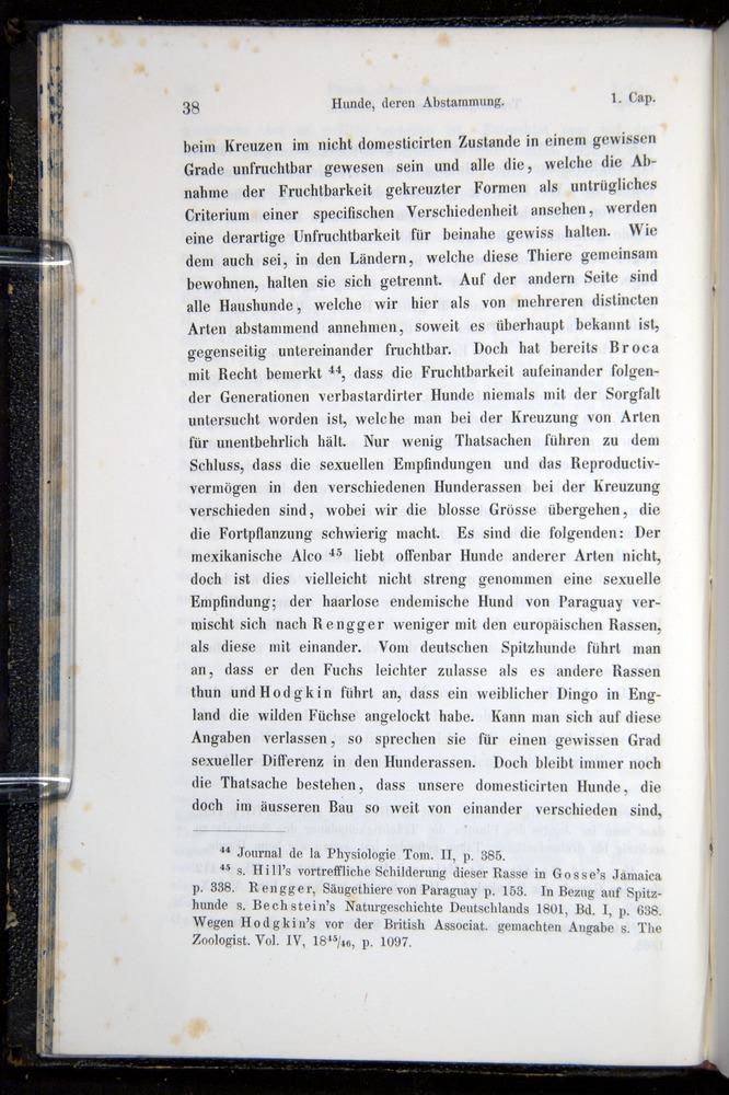 Image of Darwin-F914.1-1868-00038