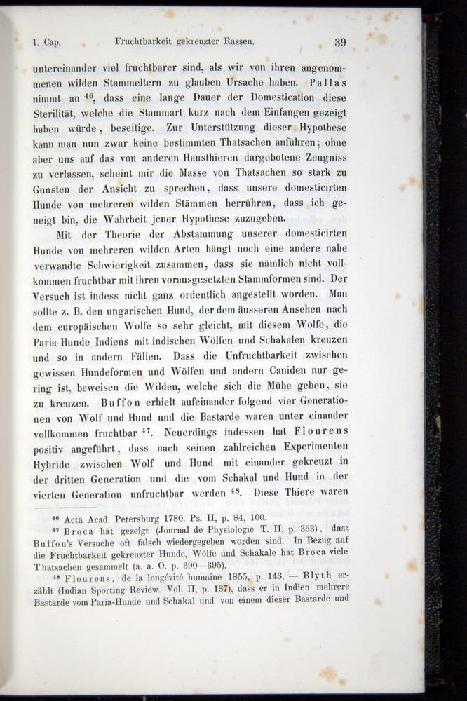 Image of Darwin-F914.1-1868-00039