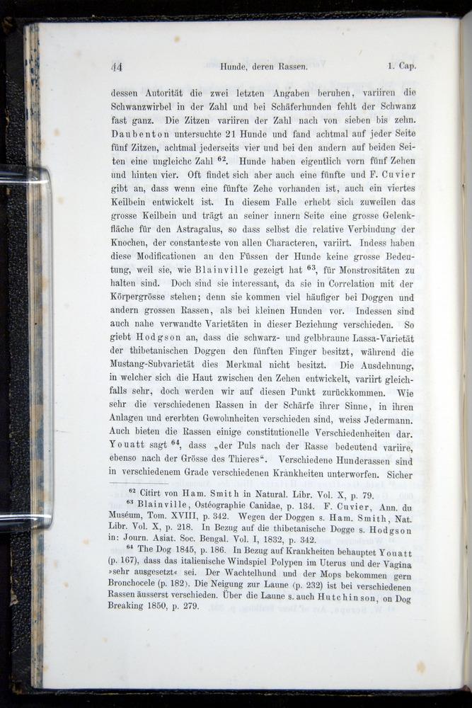 Image of Darwin-F914.1-1868-00044