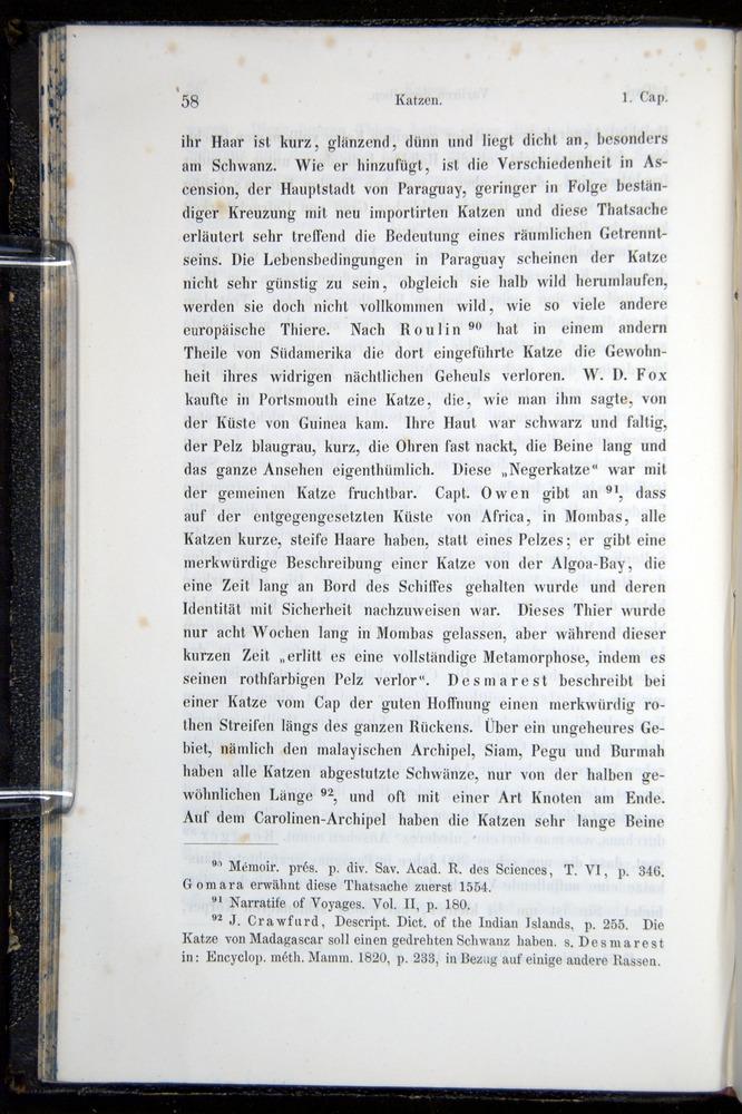 Image of Darwin-F914.1-1868-00058